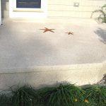 Shoreline Porch Spray Texture Starfish