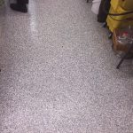 Dog Kennel Floor- Epoxy Vinyl Chip